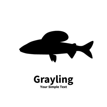 salmonidae: Vector illustration silhouette of grayling fish. Isolated on white background. Illustration
