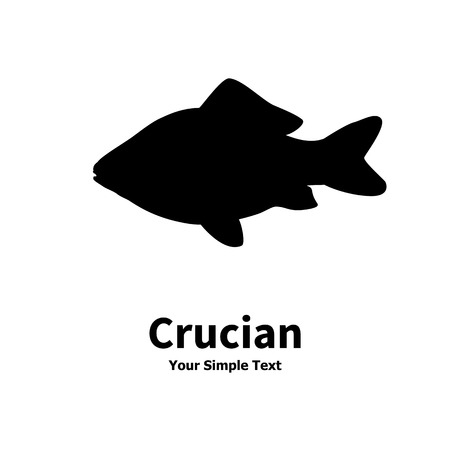 crucian: Vector illustration silhouette of crucian carp. Isolated on white background.