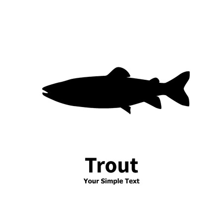 Vector illustration silhouette of trout fish. Isolated taimen on a white background. Ilustrace