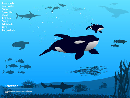 Vector illustration infographics ocean sea underwater world. Marine animals and fish. Background for web pages and mobile phone applications. Flat style. Sea underwater life.