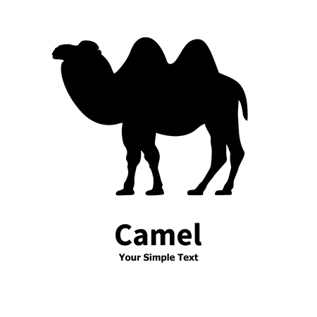 goof: Vector illustration of a silhouette of a Bactrian camel. On an isolated white background. Illustration