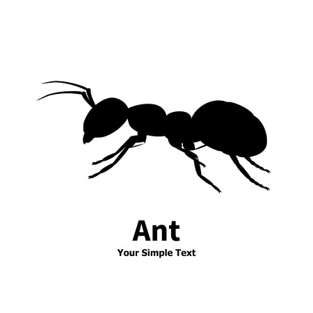 Vector illustration silhouette of ant on white background isolated. Ant side view profile. The insect lives in the house.