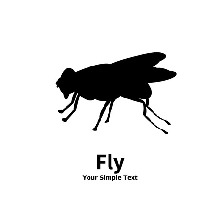 adverse: Vector illustration of a silhouette of a fly on an isolated white background. Fly side view profile. The insect lives in the house.