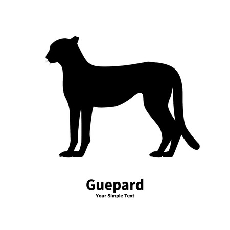 side view: Vector illustration of a silhouette of a cheetah isolated on white background. Guepard side view profile.
