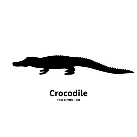 coldblooded: Vector illustration of black silhouette of crocodile isolated on white background. Croc side view profile.