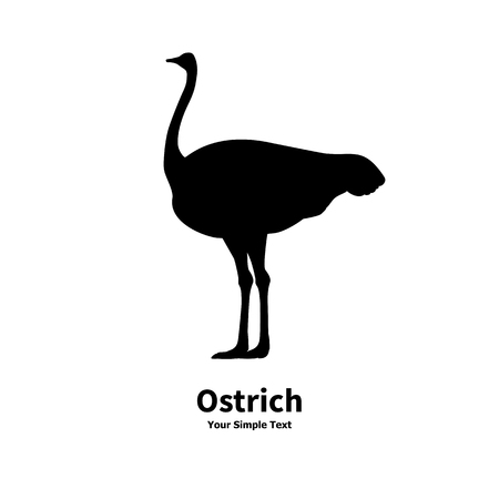 Vector illustration of black silhouette of ostrich isolated on white background. Camel-bird side view profile.