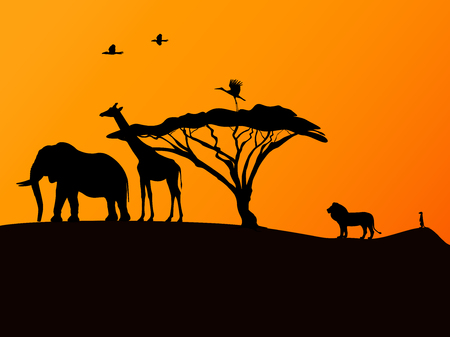 small flock: Vector illustration picture background African sunset and animals.