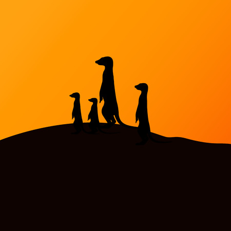 Vector illustration of a group of meerkats watching the sunset. Silhouette of a meerkat. Illustration