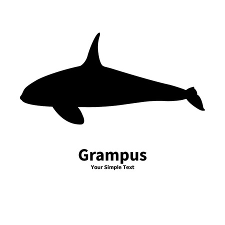 Vector illustration of black silhouette of killer whales. Grampus isolated on a white background. Orca is a side view profile. Illustration
