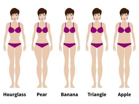 女性像の 5 種類のベクター イラストです。女性の体格。白い背景上に分離。女性の身体の変化。
