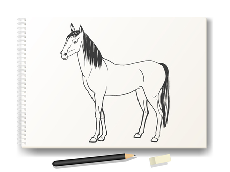 Vector illustration of a horse drawn by hand in pencil on the album A4. The concept of learning to draw animals. Drawing lessons.
