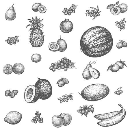 grocery shopping: Vector illustration sketch doodle hand-drawn set fruit. Isolated white background. Background icons for grocery shopping. Collection of juicy fruits and berries. Dietary food.
