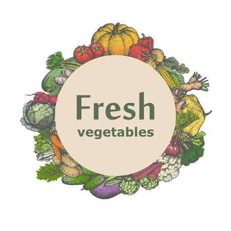 breezy: Vector illustration sign icon fresh vegetables. Badge, emblem juicy veggies. Picture, drawing isolated on white background. Vintage, retro style.