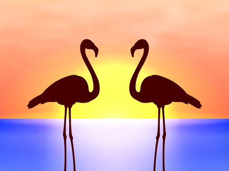 two birds: Vector silhouette couple flamingos in the sunset