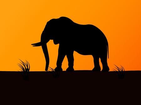 Vector silhouette elefante su sfondo del tramonto Vettoriali