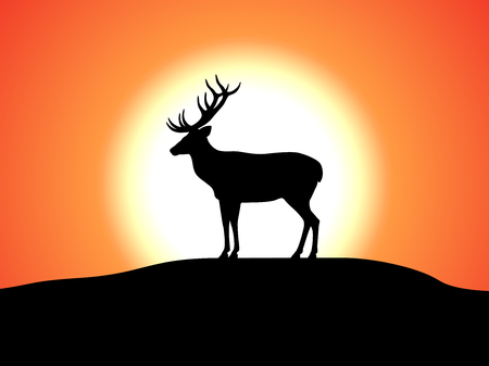 Vector deer with horns standing against the sunset Illustration