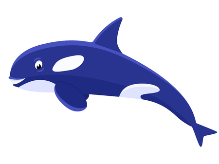Vector illustration of a cartoon cute killer whale. Isolated white background.