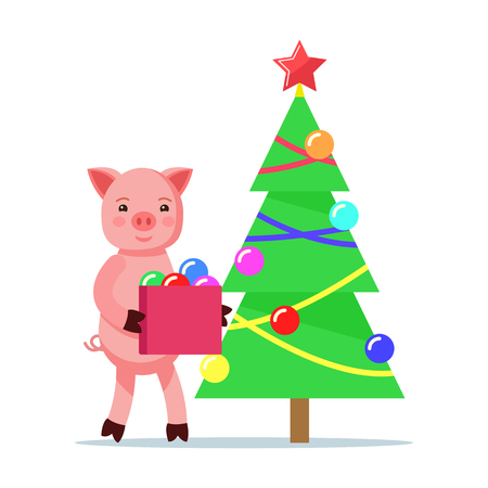 Vector illustration of a cute pink cartoon piggy dressing up Christmas tree decorations. Isolated white background. A little pig carries a box of ornaments for the tree. Flat style.