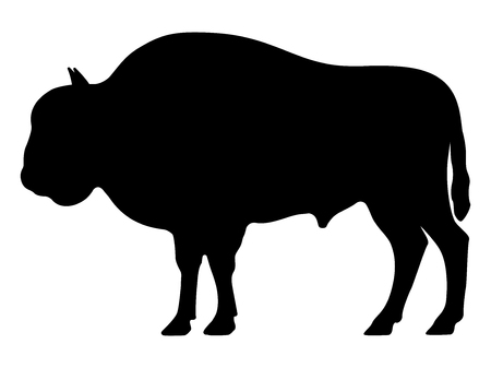 Vector black silhouette of a bison Çizim