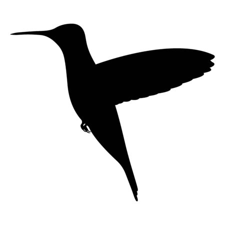 Vector illustration black silhouette hummingbird