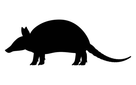 Vector illustration black silhouette armadillo