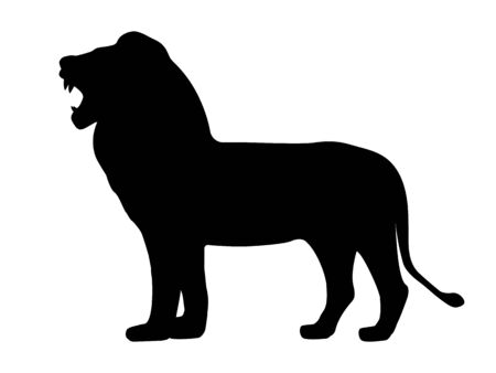 Black silhouette growling lion