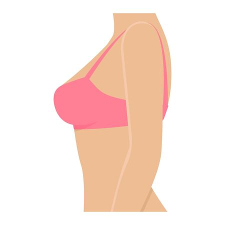 Female breasts in the bra
