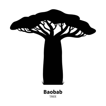 Black baobab tree silhouette. Vector illustration isolated on white background. Baobab logo icon. Illustration