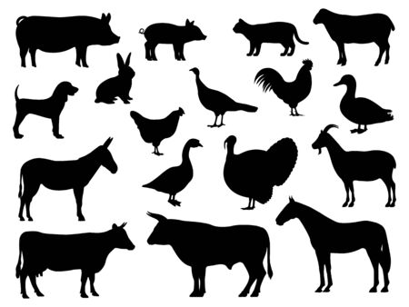 Set of silhouettes of domestic farm animals