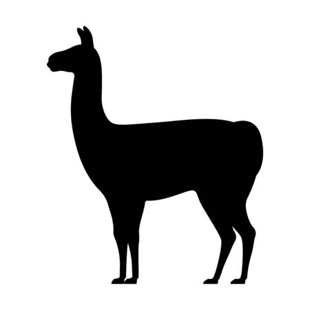 Llama silhouette isolated on white.