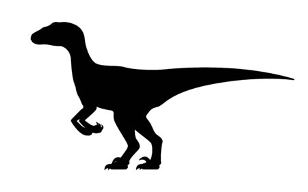 Velociraptor silhouette. Vector illustration black silhouette raptor dinosaur isolated on white background. Dinosaur icon, side view profile.