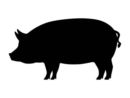 Vector pig silhouette