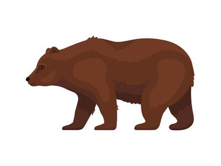 Brown cartoon grizzly bear