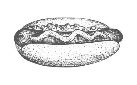 Hotdog hand drawn 向量圖像
