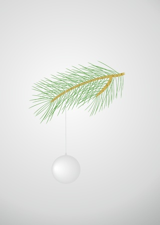 pine branch: Green pine branch with a white ball