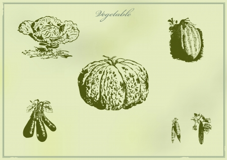 vintage collection of different vegetables