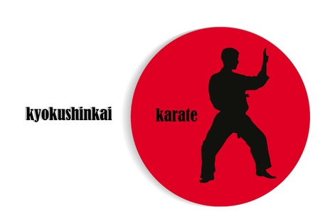 illustration, silhouette of the man of engaged karate