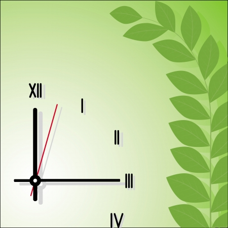 o'clock: clock and branch with leaves on a green background
