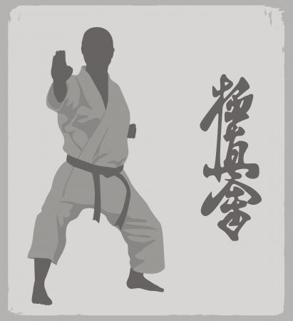 peleando: la ilustraci�n, la persona en un kimono a karate Vectores