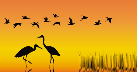 Storks in the middle of a reservoir on an orange background Vector