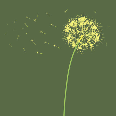 blown: The dandelion which is blown a wind on a light green background. Illustration