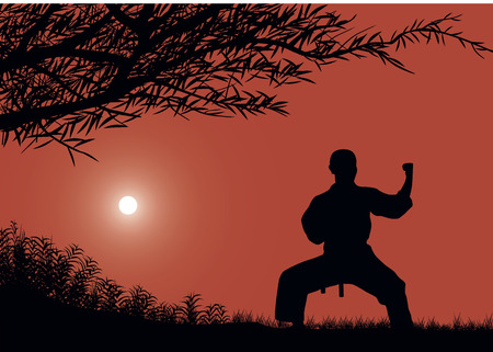 engaged: The man is engaged in karate against the sun. Illustration