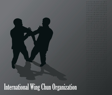 budo: Men are engaged in the Kung fu Wing Chun.
