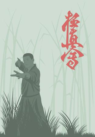 kyokushin: The man shows karate. Illustration