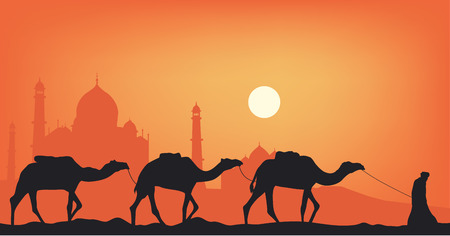 Camels in the desert against the background of the mosque.