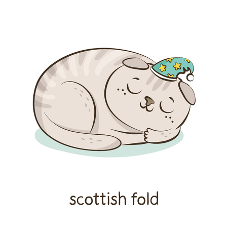 Scottish fold. Cute vector cartoon cat character in a hat sleeping isolated on white with breed caption Иллюстрация