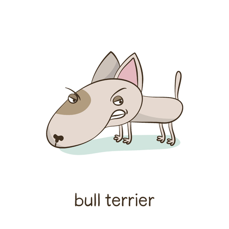 Bull terrier. Cute vector cartoon dog character isolated on white with breed caption Illustration