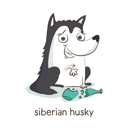 Siberian husky. Cute vector cartoon dog character with broken bottle isolated on white with breed caption