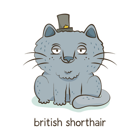 British shorthair. Cute vector cartoon cat character in a hat isolated on white