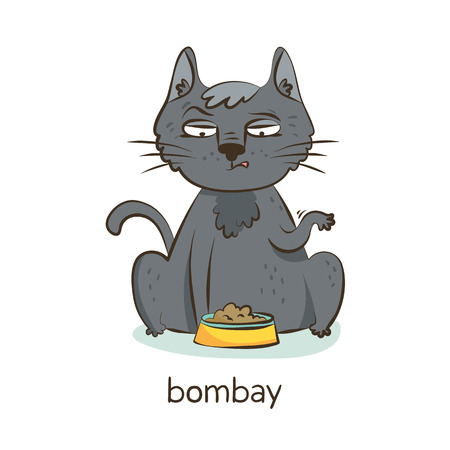 Bombay cat. Cute vector cartoon black cat character with a bowl of food isolated on white with breed caption Illustration